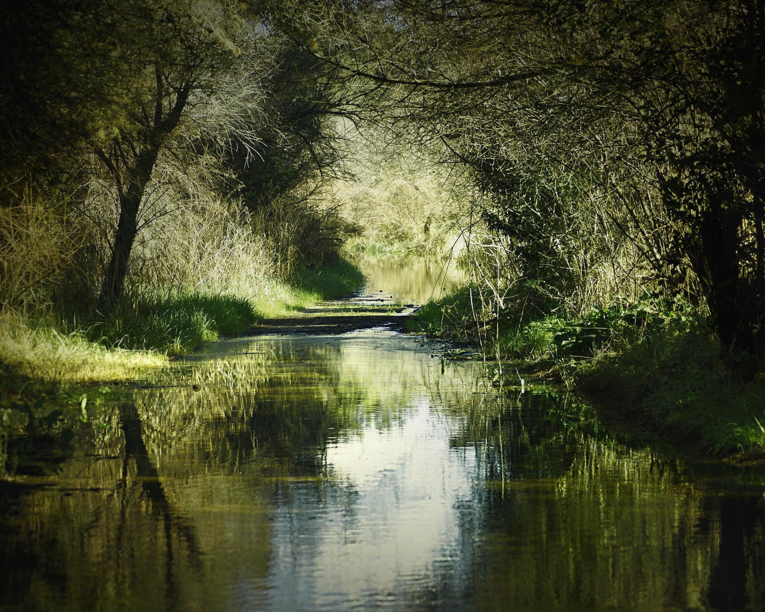 Pleasant Life Journey